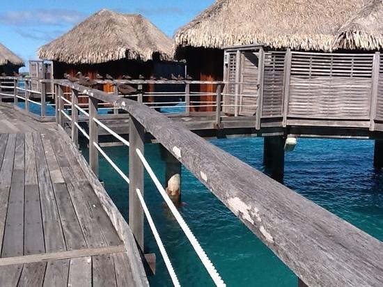 Sofitel Bora Bora Marara Beach Resort: les pilotis