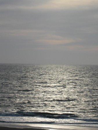 Princess Royale Resort : Ocean