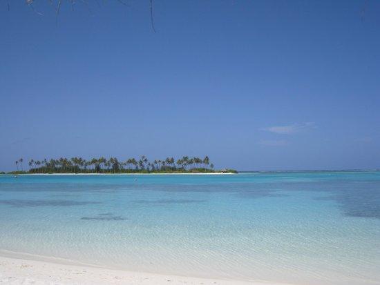 Olhuveli Beach & Spa Maldives : Laguna