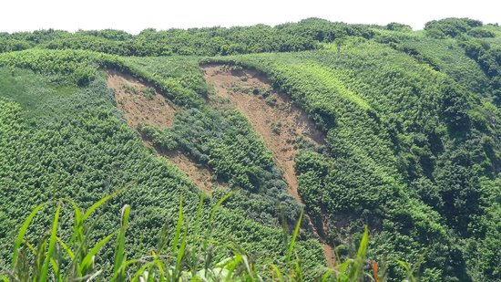 """Teuri Island: The """"Heart"""" of Teuri in the Kannon Lookout Point"""