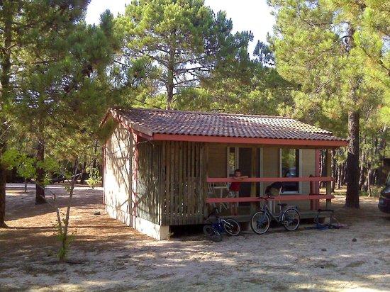 bungalow photo de camping golfo di sogno porto vecchio tripadvisor. Black Bedroom Furniture Sets. Home Design Ideas