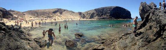 Playa de Papagayo: Papagayo