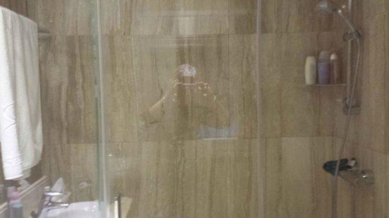 Hotel Regina: Shower