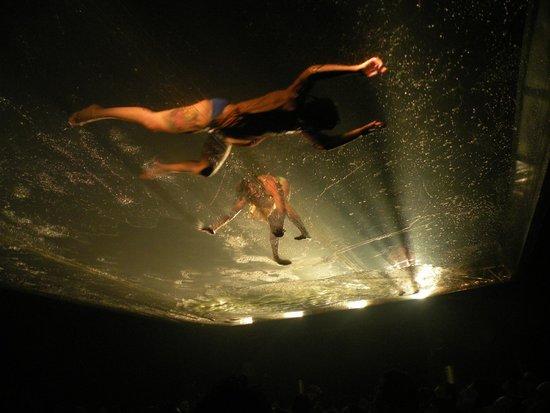 Fuerza Bruta : Durante o show