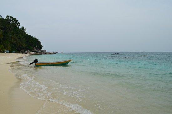 Perhentian Tuna Bay Island Resort : spiaggia