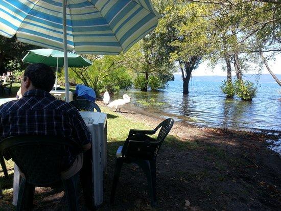 I tavolini picture of giardino del lago anguillara for Lago tavolini