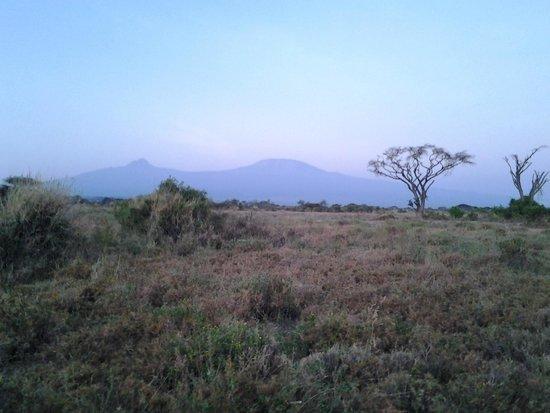 Campi ya Kanzi : Mt Kilimanjaro from Fly Camp