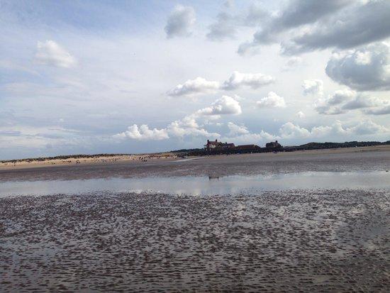 The Hoste: Beach walk