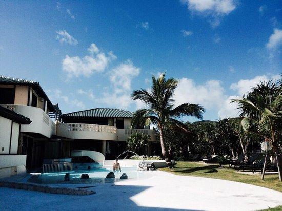 La Casa Panacea : プール