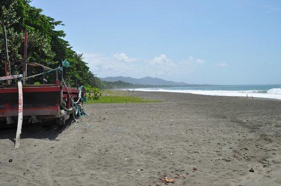 The Point Sports Bar & Grill: The beach facing Cauhita