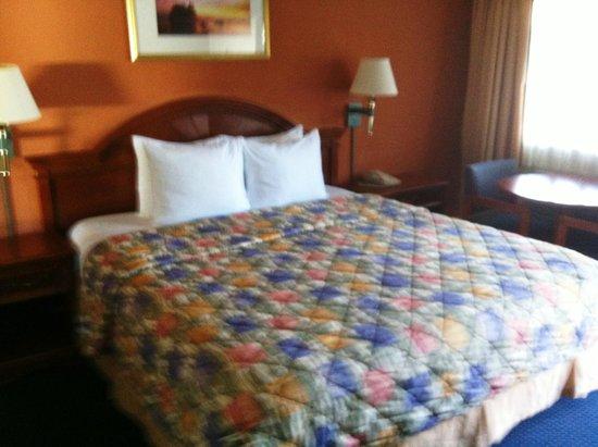 Super 8 Monterey / Carmel: bed