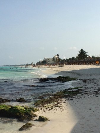 Iberostar Grand Hotel Paraiso: beach view