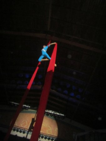 Luxury Bahia Principe Esmeralda Don Pablo Collection : Circus of Dreams