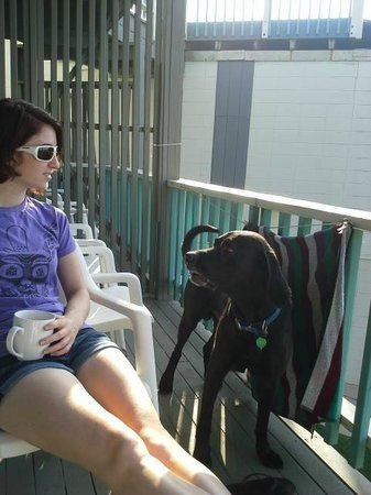 Atlantis Lodge : Morning coffee with the pups