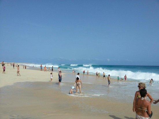 Hotel Riu Touareg : The beach