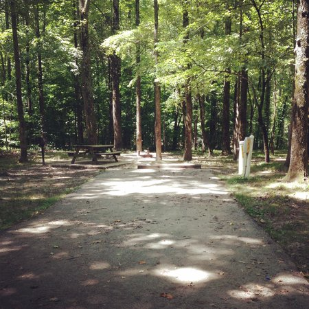 Meeman-Shelby Forest State Park: Site 35.