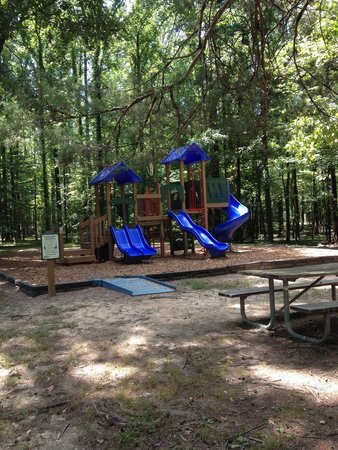 Meeman-Shelby Forest State Park: Nice clean playground, close to lots of sites