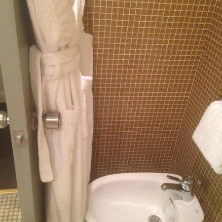 Le Meridien Nice : bathrobes were basically in the bidet