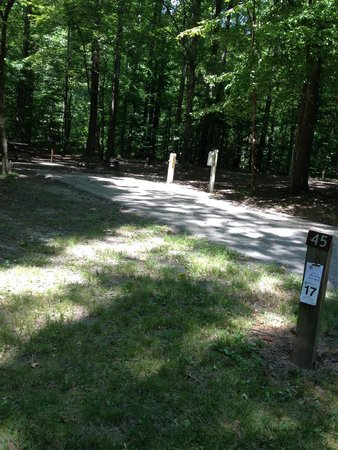 Meeman-Shelby Forest State Park: Site 45,