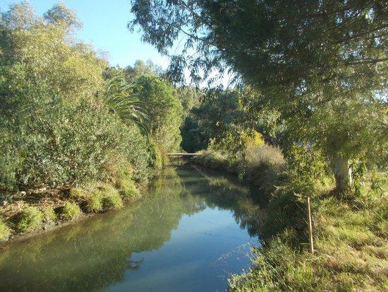 Phaselis Antique City: река у бухты Фазелиса