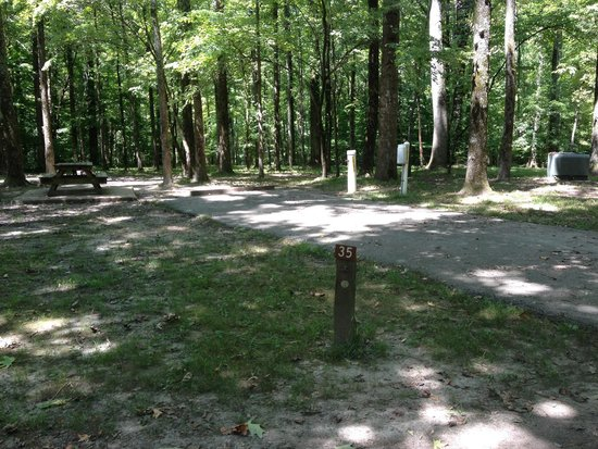 Meeman-Shelby Forest State Park: Site 35,