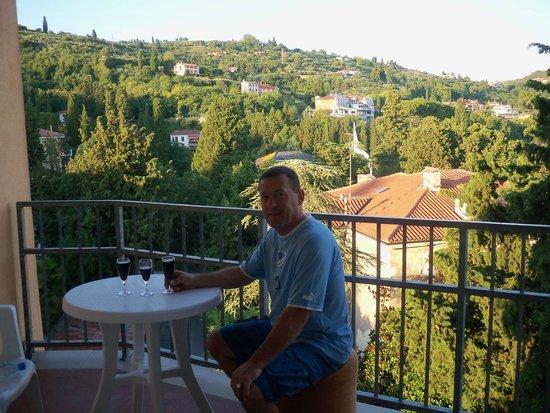 Hotel Mirna - LifeClass Hotels & Spa: Вид из номера