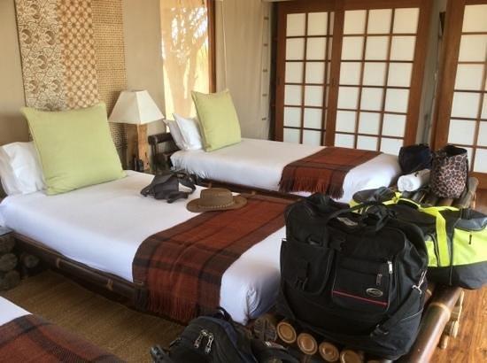 Sayari Camp, Asilia Africa : Our room before we unpacked!