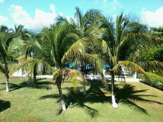 Marina Paraiso: Vista a la alberca