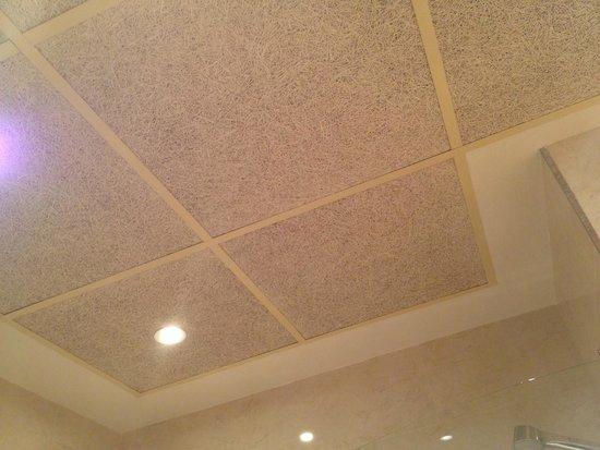 Hotel Don Paco: Detalle del techo del baño