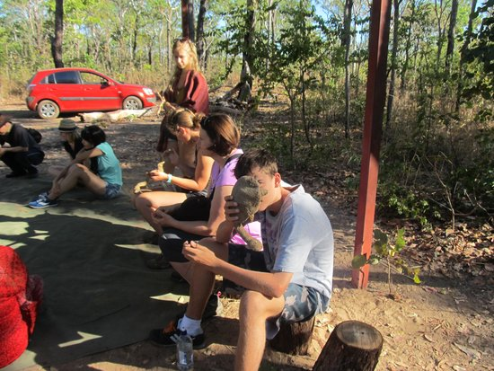 Pudakul Aboriginal Cultural Tours: being creative (toy turtle)