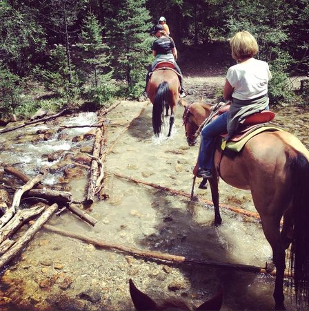Mt Princeton Riding Stables & Equestrian Center : Through the most beautiful rivers