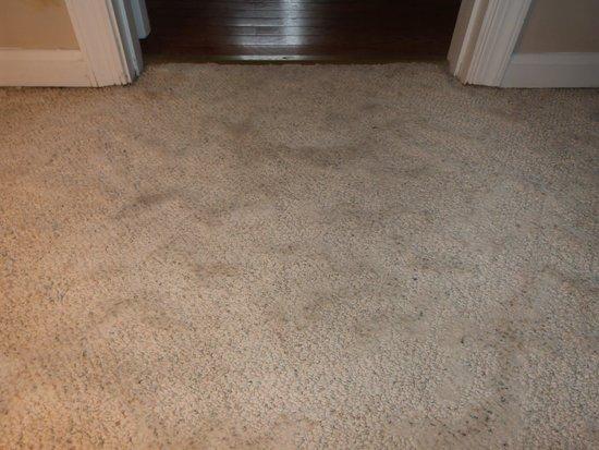 1848 Island Manor House : Bedroom carpet