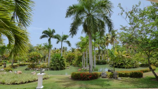 Meliá Caribe Tropical: The resort