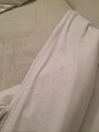 Whiteleaf Hotel: Marks on bed sheets ! Bugs....