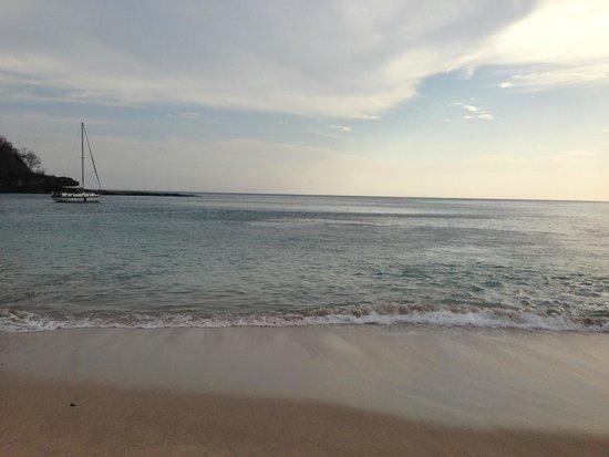 Pelican Eyes Resort and Spa : Costa Blanca Beach
