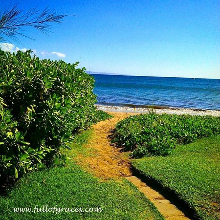 Kihei Kai Oceanfront Condos: The lawn and beach on the property.