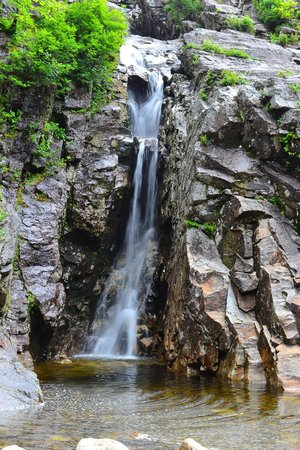 Crawford Notch State Park: Flume Cascade