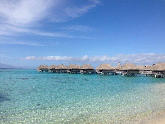 Sofitel Moorea Ia Ora Beach Resort : Overwater
