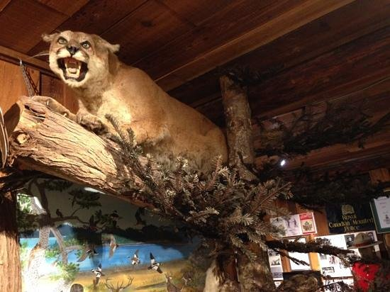 The Sooke Region Museum : One of the many exhibits