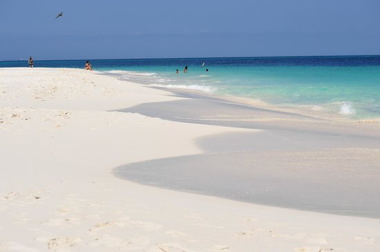 My Aruban Home: eagle beach