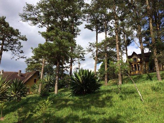 Ana Mandara Villas Dalat Resort & Spa: Beau non?