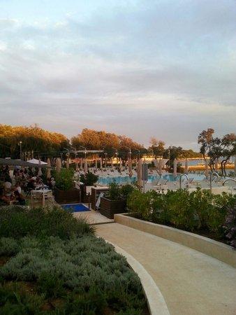 Amarin Studio and Apartments: Vista del pool-bar del ristorante e della pizzeria