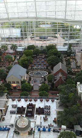 Gaylord National Resort & Convention Center : View of Atrium from Room on 17th floor