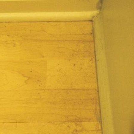 ArrowHead Resort: Dust on baseboards