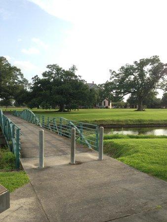 Pedestrian Bridge: Southdown Plantation in background.