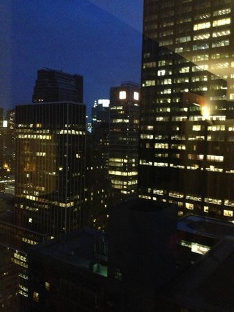 Le Parker Meridien New York: City View not bad either!
