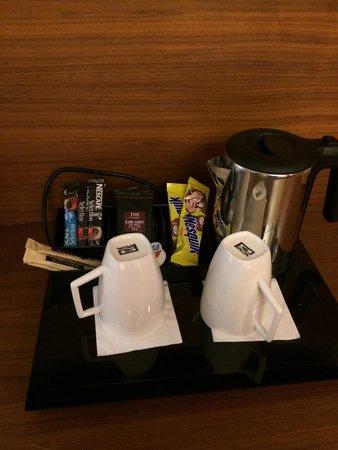 Hotel Beau Rivage : スーペリアルーム