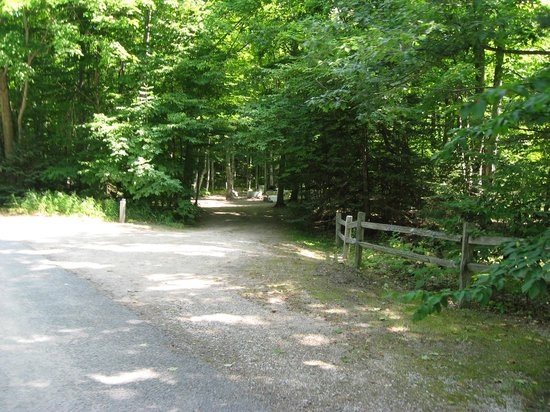 Barnes Park Campground: Campground