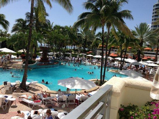 Loews Miami Beach Hotel: pileta llena
