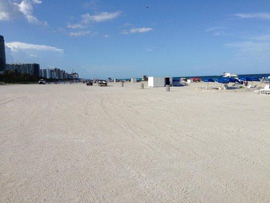 Loews Miami Beach Hotel: playa